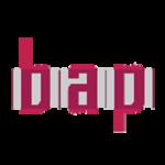 Logo des Bundesausschuss politische BIldung (bap) e.V.